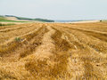 Straw bales in agricultural harvested wheatfield europe Stock Image