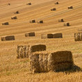 Straw bales background Royalty Free Stock Photo
