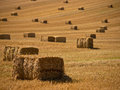 Straw bales background a farm field in the countryside filled with Stock Photo