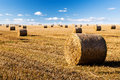 Straw bales field blue sky Royalty Free Stock Photo