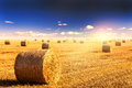Straw bales and sunset Royalty Free Stock Photo