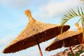 Straw beach umbrella with palm in hot summer day bulgaria Stock Photos