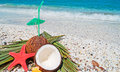 Straw coconuts and starfish shells by the shore Royalty Free Stock Photography