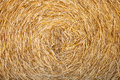 Straw crop Royalty Free Stock Photo