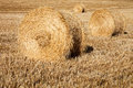 Straw crop Stock Photography