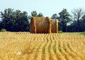 Straw has been cut and baled Royalty Free Stock Photo