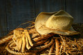 Straw hat with gloves on a bale of hay Royalty Free Stock Photo