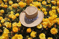 The straw hat is left by the tourist Royalty Free Stock Image
