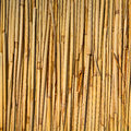 Straw reed background texture pattern see my other works in portfolio Stock Photos