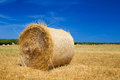 Straw roll bale on the farmland with the clear blue sky at menorca spain Royalty Free Stock Image