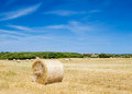 Straw roll bale on the farmland in sunny day at menorca spain Stock Photography