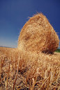 Straw roll on the field blue sky and bales after harvesting serbia vojvodina Stock Photography