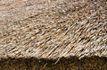 Straw Roof Royalty Free Stock Image