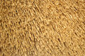 Straw roof background Royalty Free Stock Photo