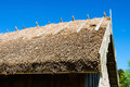 Straw roof on a old barn Royalty Free Stock Photo