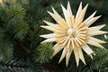 Straw star with fir bough Royalty Free Stock Photography