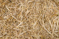 Straw Texture Royalty Free Stock Photography