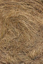 Straw texture Royalty Free Stock Images