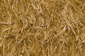 Straw texture Stock Photos