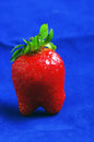 Strawberrie ripe isolate over blue background Stock Images