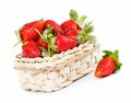 Strawberrie see my other works in portfolio Royalty Free Stock Photo