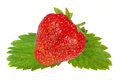 Strawberrie on white Royalty Free Stock Images