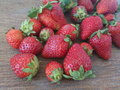 Strawberries in all size Royalty Free Stock Photo