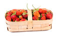 Strawberries in a basket Royalty Free Stock Photo