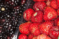 Strawberries and blackberries background. Foreground close up macro Royalty Free Stock Photo