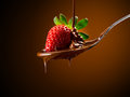 Strawberries and chocolate cream poured over a bed of Royalty Free Stock Images