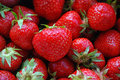 Strawberries close up of fresh strawberris Royalty Free Stock Photography