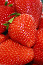 Strawberries closeup of bunch of fresh Stock Photo