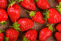 Strawberries closeup on a linen towel top view textile Stock Images