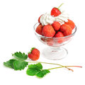 Strawberries and cream in bowl on white background Royalty Free Stock Images