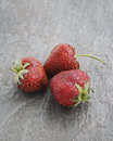 Strawberries a on dark background Royalty Free Stock Photos