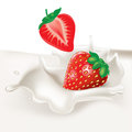 Strawberries falling in cream splash on white Stock Images