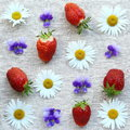 Strawberries and flowers Royalty Free Stock Photo