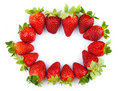 Strawberries frame Stock Images