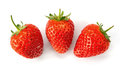 Strawberries fresh over white background Royalty Free Stock Photos