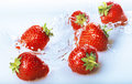 Strawberries fresh and splashed water Stock Photos