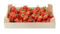 Strawberries fresh in strawberry crate Stock Photography