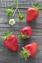 Strawberries freshly picked on wooden background Royalty Free Stock Image
