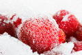 Strawberries frozen for long duration storage of ice and snow it can be used as background Royalty Free Stock Image