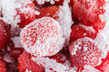 Strawberries frozen for long duration storage of ice time covered with and snow it can be used as background Stock Photography