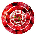 Strawberries fruits background healthy collage Royalty Free Stock Photos