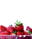 Strawberries isolated close up of in a plastic container Royalty Free Stock Image
