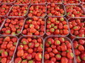Strawberries at market Royalty Free Stock Photography
