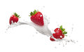 Strawberries with milk splash Royalty Free Stock Photo