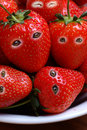 Strawberries with open eyes Royalty Free Stock Image