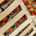 Strawberries ready for sale Royalty Free Stock Images